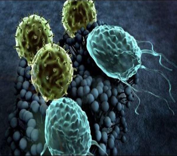 ضد قارچ و باکتری Biocides