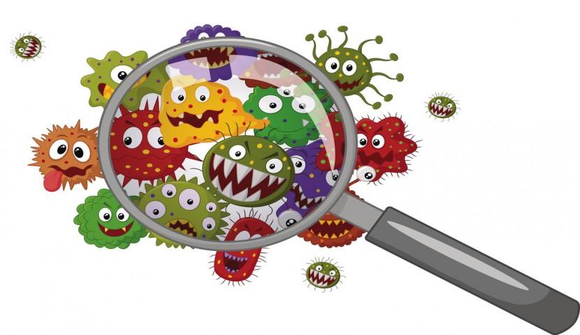 ضد کپک و ضد قارچ صنعتی چیست؟